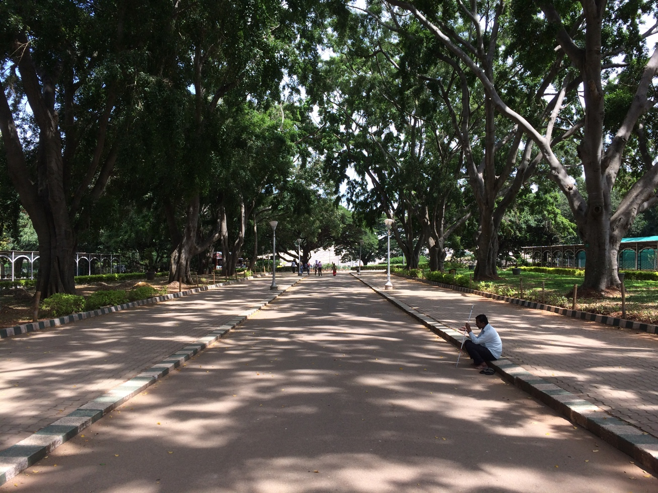 Bangalore, Lal Bagh, alley